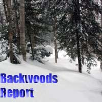 backwoods report